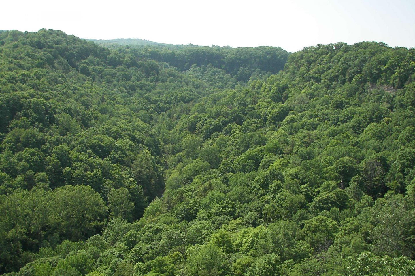 Spencer Gorge Conservation Area