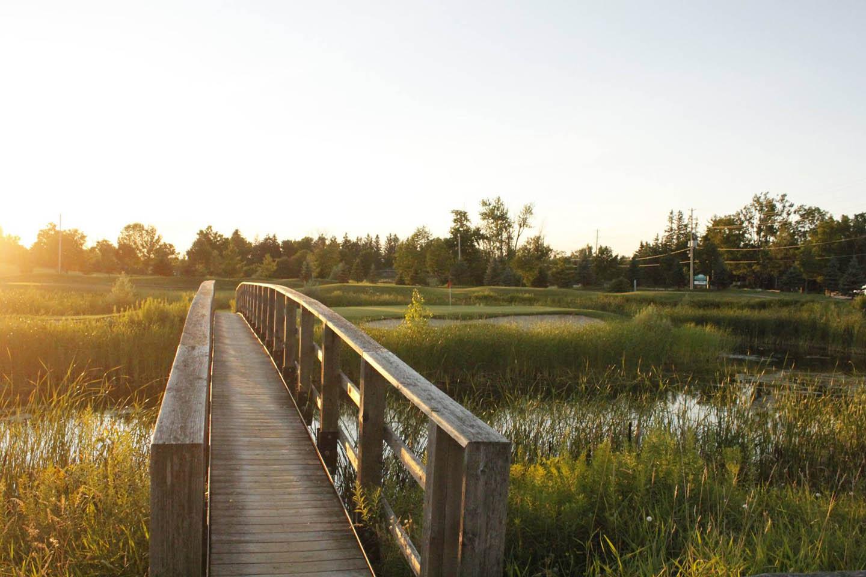 Turtle Creek Golf
