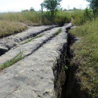 Eramosa Karst Conservation Area