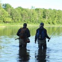 Fly Fishing Guiding and Casting Instruction