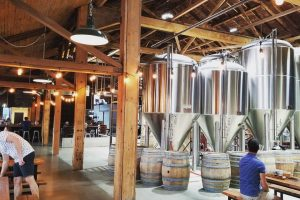 True Brew Path Spotlight: SHED Brewing Co.
