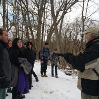 Winter Hike Experience in the Nith Forest