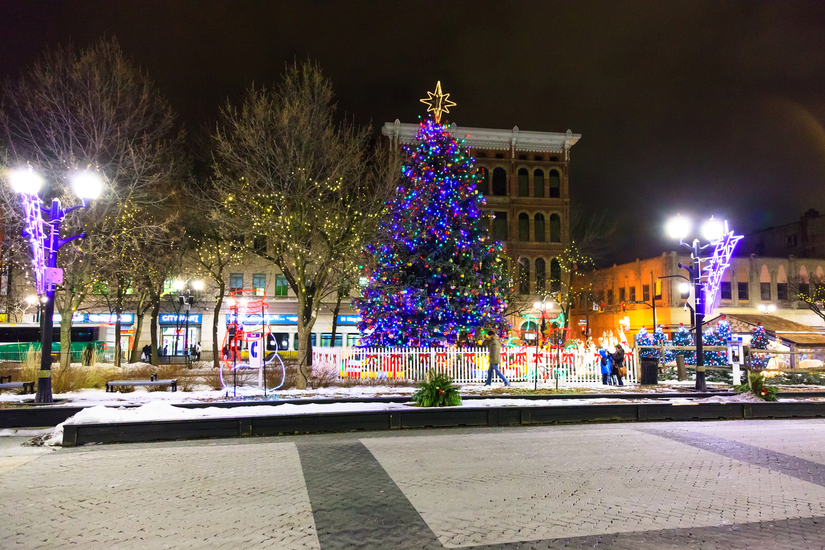 Christmas Tree of Hope and Lighting at Gore Park