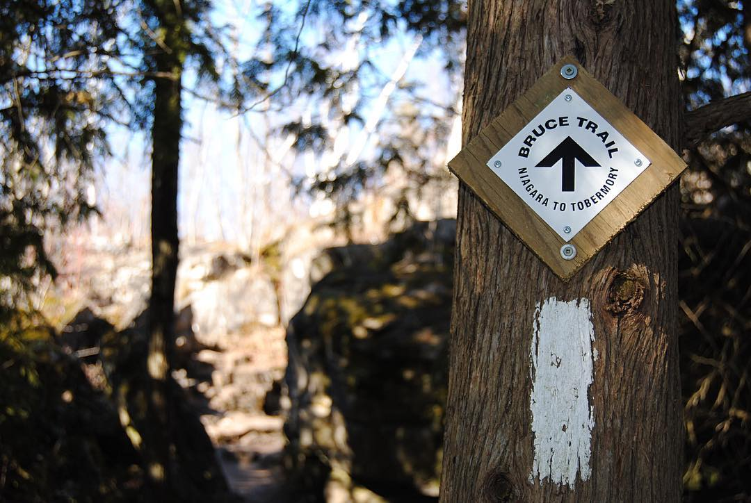 Bruce Trail Iroquoia Hike, Full Day Waterfall Experience
