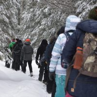Winter Survival in the Wild Hiking Experience