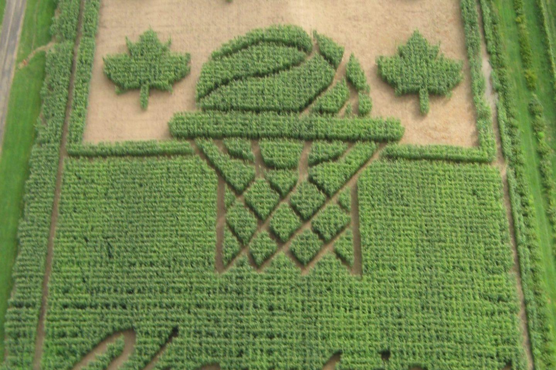Tribute Corn Maze & Pumpkin Hayrides at Lindley's Farms
