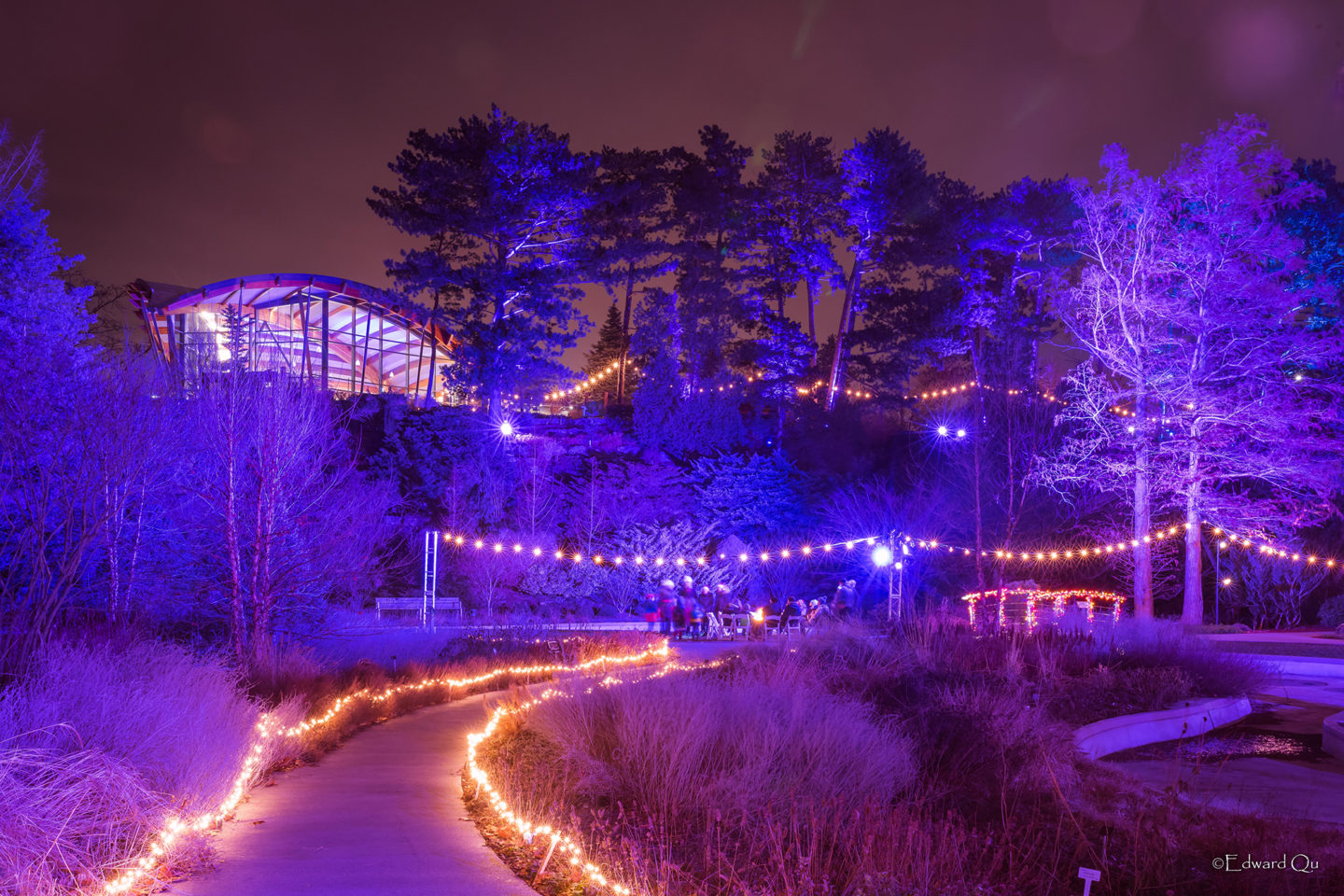 Winter Lights at the Rock Garden