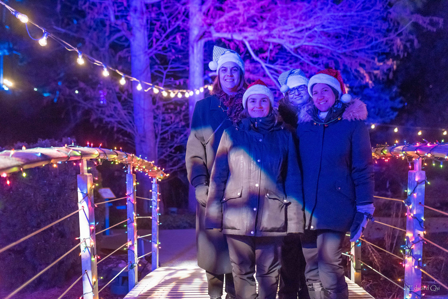 Save on Tickets to Winter Lights at the Rock Garden