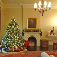 Museum Christmas Tour