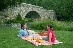 Beyond The Basket: <small> 4 Easy Ways To Create Summer Picnic Perfection</small>