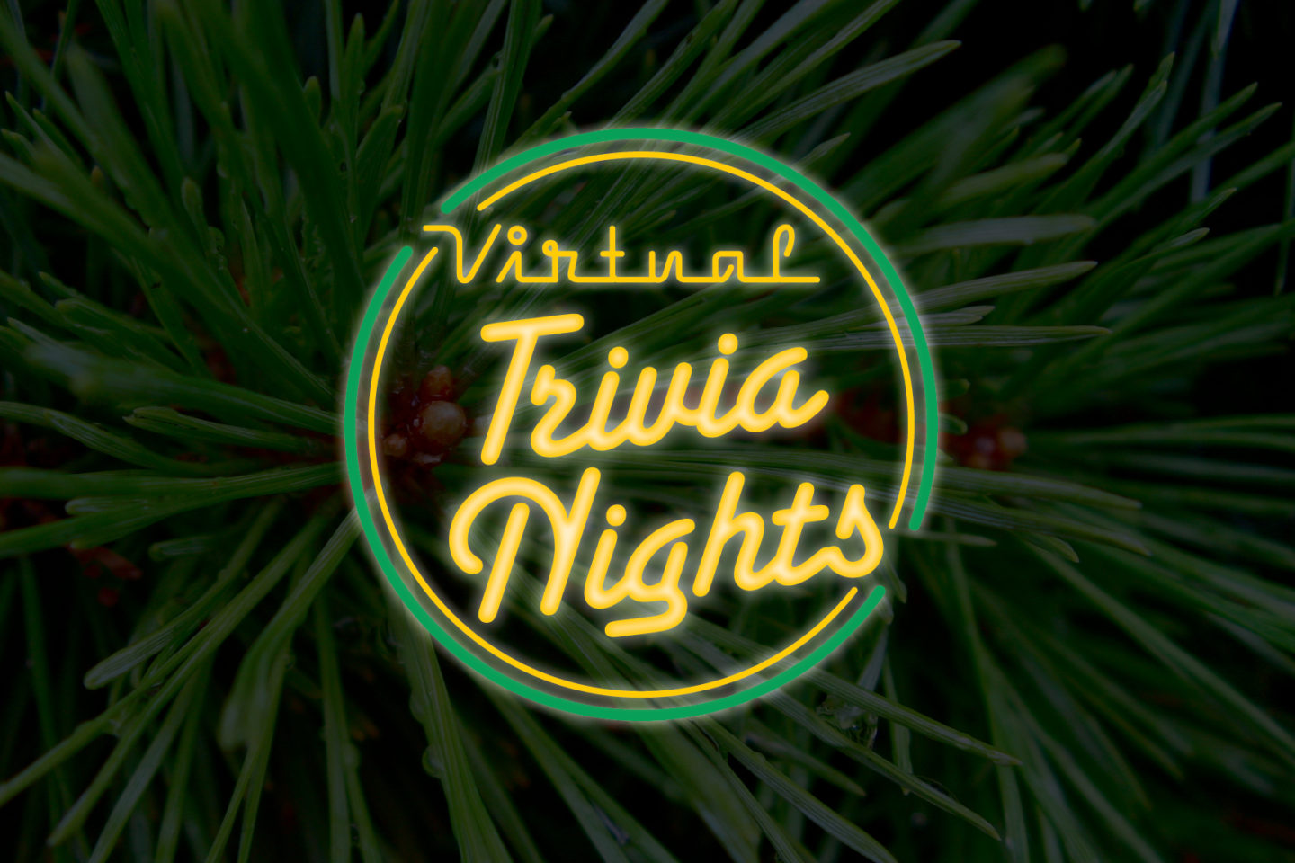 Virtual Trivia Nights