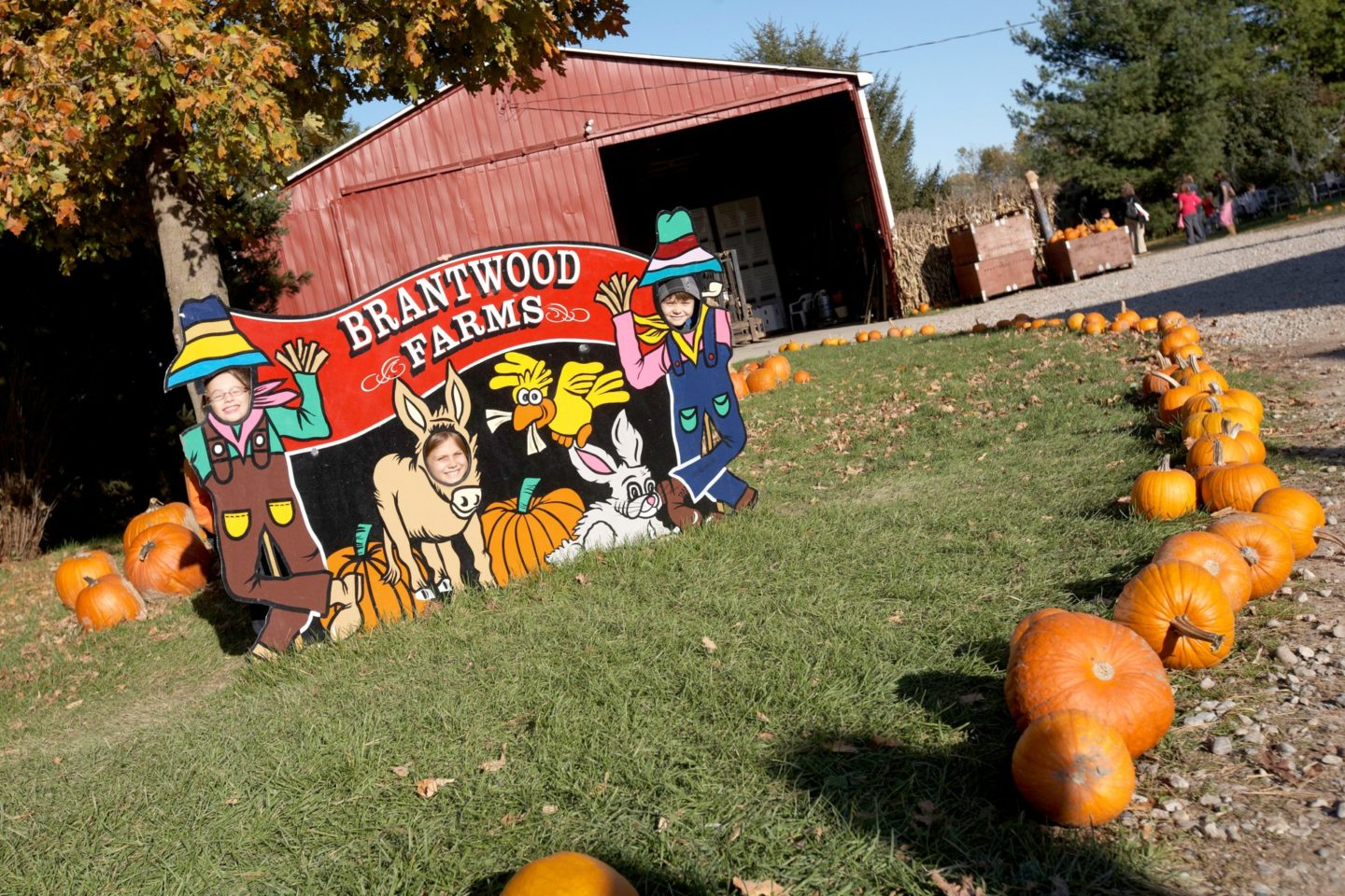 Fall Festival at Brantwood Farms 2021
