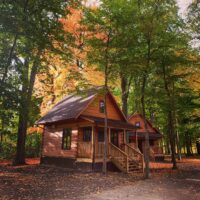 Chiefswood Park Cabins
