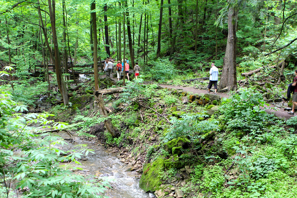 Bruce Trail Iroquoia Waterfall Day Trip