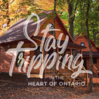 Two-Night Cabin Stay at Chiefswood Park